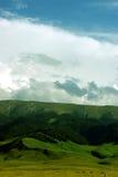 Δάσος βουνών στοκ φωτογραφία