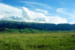 Δάσος βουνών στοκ φωτογραφίες με δικαίωμα ελεύθερης χρήσης