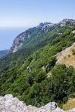 Δάσος βουνών στοκ φωτογραφία με δικαίωμα ελεύθερης χρήσης