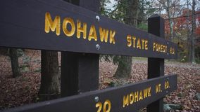 Δάσος βουνών Mohawk (6 9) απόθεμα βίντεο