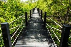 δάσος γεφυρών Στοκ φωτογραφίες με δικαίωμα ελεύθερης χρήσης