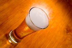 δάσος γυαλιού μπύρας ανα& Στοκ Φωτογραφία