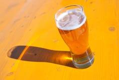δάσος γυαλιών μπύρας ανα&sigma στοκ εικόνες