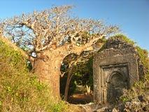 δάσος εισόδων στοκ φωτογραφία με δικαίωμα ελεύθερης χρήσης