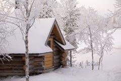 δάσος εξοχικών σπιτιών Στοκ Εικόνες