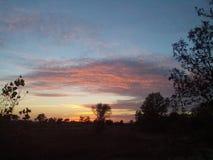 Δάσος ηλιοβασιλέματος Στοκ φωτογραφία με δικαίωμα ελεύθερης χρήσης