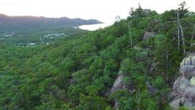 Δάσος και δέντρα με τον εναέριο πυροβολισμό βράχων και πετρών απόθεμα βίντεο