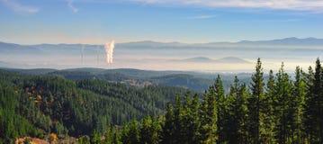 Δάσος και κτύποι Στοκ εικόνες με δικαίωμα ελεύθερης χρήσης