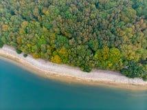 Δάσος και μια εναέρια άποψη λιμνών στοκ εικόνα με δικαίωμα ελεύθερης χρήσης