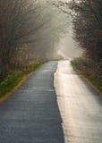 Δάσος και δρόμος φθινοπώρου Στοκ εικόνα με δικαίωμα ελεύθερης χρήσης