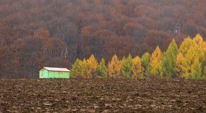 Δάσος και σπίτι φθινοπώρου Σύνθεση της φύσης Στοκ φωτογραφία με δικαίωμα ελεύθερης χρήσης