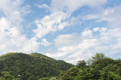 Δάσος και σύννεφο στην ηλιόλουστη ημέρα κάτω από το μπλε ουρανό Στοκ Φωτογραφία