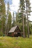 δάσος καμπινών ξύλινο Στοκ εικόνες με δικαίωμα ελεύθερης χρήσης
