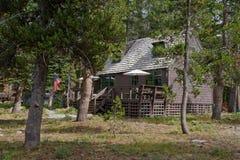 δάσος καμπινών ξύλινο Στοκ Εικόνες