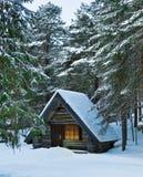 δάσος καμπινών Στοκ Φωτογραφία
