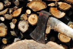 δάσος κορμών σιδήρου τσε Στοκ Φωτογραφία