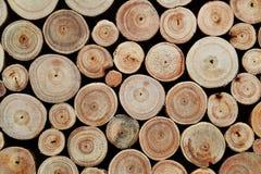 δάσος κούτσουρων ανασκοπήσεων Στοκ Εικόνα