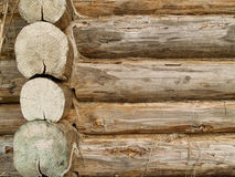 δάσος κούτσουρων Στοκ Εικόνα