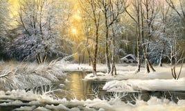 δάσος λιμνών στοκ φωτογραφίες με δικαίωμα ελεύθερης χρήσης