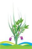 δάσος λουλουδιών πράσι&nu διανυσματική απεικόνιση
