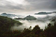 Δάσος με την ομίχλη πέρα από τα βουνά Ευρώπη στοκ εικόνα