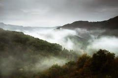 Δάσος με την ομίχλη πέρα από τα βουνά Ευρώπη στοκ εικόνες