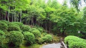 Δάσος μπαμπού σε Arashiyama, Κιότο Στοκ φωτογραφίες με δικαίωμα ελεύθερης χρήσης