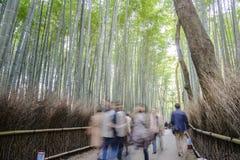 Δάσος μπαμπού σε Arashiyama στο Κιότο Στοκ Εικόνες