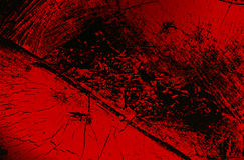 δάσος πάγου ανασκόπησης gr Στοκ εικόνα με δικαίωμα ελεύθερης χρήσης