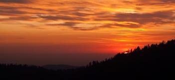 δάσος πέρα από το ηλιοβασί&l στοκ φωτογραφία