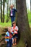 δάσος παιδιών στοκ φωτογραφίες