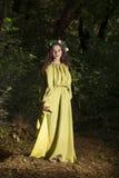 Δάσος παραμυθιού φαντασίας Στοκ φωτογραφία με δικαίωμα ελεύθερης χρήσης