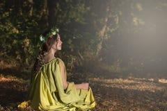 Δάσος παραμυθιού φαντασίας Στοκ φωτογραφίες με δικαίωμα ελεύθερης χρήσης