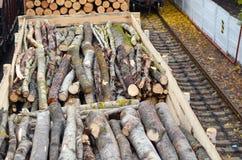 Δάσος περιβάλλοντος, φύσης και αποδάσωσης - κατάρριψη των δέντρων Η έννοια ενός σφαιρικού προβλήματος Φορτηγό τρένο που φορτώνετα Στοκ Εικόνες