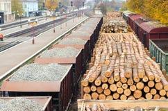 Δάσος περιβάλλοντος, φύσης και αποδάσωσης - κατάρριψη των δέντρων Η έννοια ενός σφαιρικού προβλήματος Φορτηγό τρένο που φορτώνετα Στοκ Φωτογραφίες