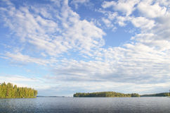 Δάσος πεύκων γύρω από τη λίμνη κάτω από τον ηλιόλουστο ουρανό, Φινλανδία στοκ φωτογραφία με δικαίωμα ελεύθερης χρήσης