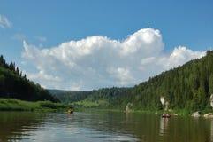 δάσος ποταμών ακτών Στοκ Εικόνες