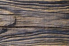 δάσος σανίδων Στοκ Φωτογραφία