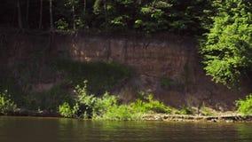Δάσος σε μια ακτή ενός πυροβολισμού λιμνών από μια κινούμενη βάρκα απόθεμα βίντεο