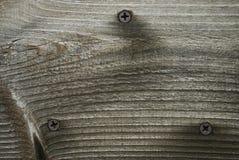 δάσος σιταριού ανασκόπησ& Στοκ Εικόνες
