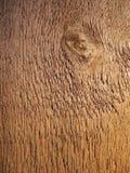 δάσος σιταριού Στοκ Φωτογραφίες