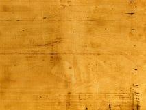 δάσος σιταριού Στοκ φωτογραφίες με δικαίωμα ελεύθερης χρήσης