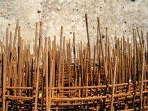 Δάσος σιδήρου Στοκ φωτογραφίες με δικαίωμα ελεύθερης χρήσης