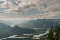 Δάσος στα βουνά Στοκ εικόνες με δικαίωμα ελεύθερης χρήσης