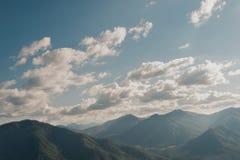 Δάσος στα βουνά Στοκ φωτογραφίες με δικαίωμα ελεύθερης χρήσης