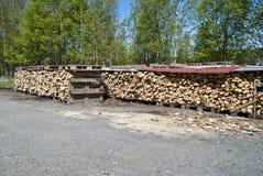 δάσος σωρών Στοκ Εικόνα