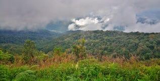 Δάσος σύννεφων, εθνικό πάρκο Doi Inthanon, Chiang Mai Στοκ Εικόνες