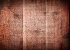 δάσος σύστασης ανασκόπησ Στοκ Εικόνες