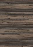 δάσος σύστασης σιταριού &a Στοκ Εικόνα