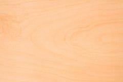 δάσος σύστασης Στοκ φωτογραφία με δικαίωμα ελεύθερης χρήσης